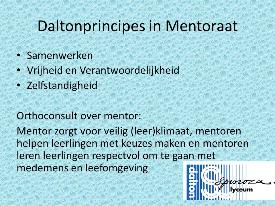 Daltonprincipes in Mentoraat