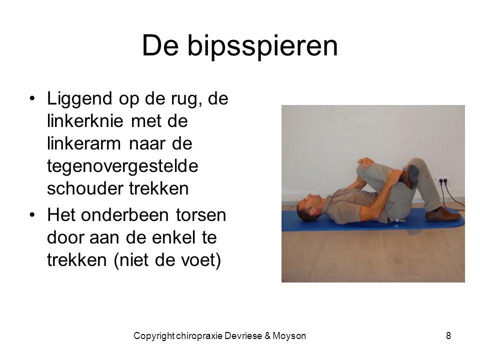 Copyright chiropraxie Devriese & Moyson