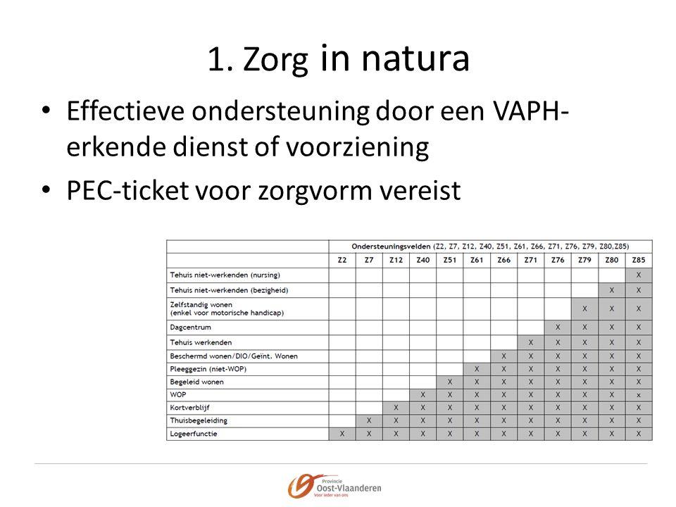 1. Zorg in natura Effectieve ondersteuning door een VAPH-erkende dienst of voorziening. PEC-ticket voor zorgvorm vereist.