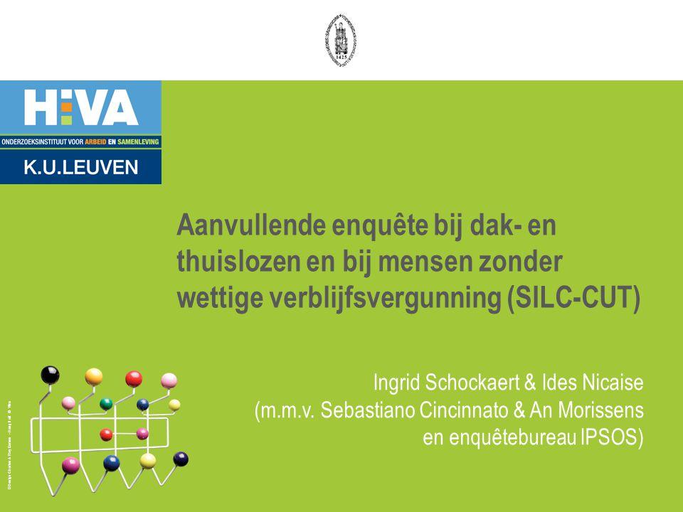 Aanvullende enquête bij dak- en thuislozen en bij mensen zonder wettige verblijfsvergunning (SILC-CUT)
