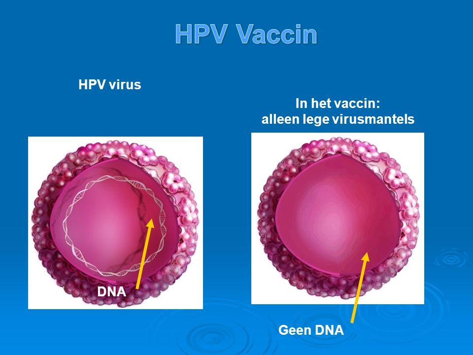 In het vaccin: alleen lege virusmantels