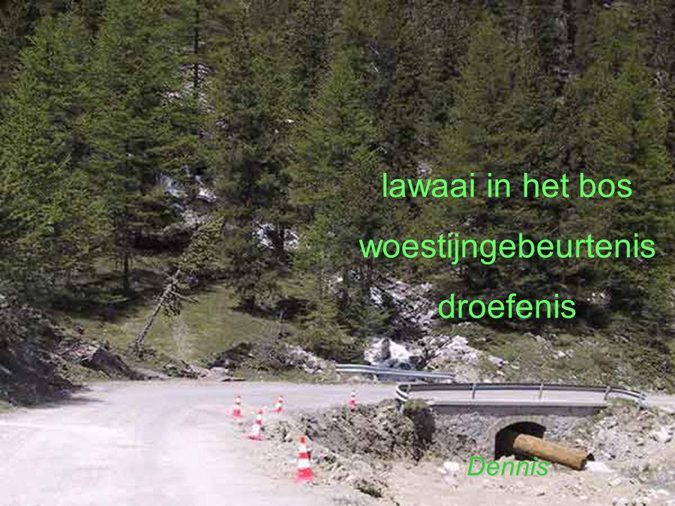 lawaai in het bos woestijngebeurtenis droefenis Dennis