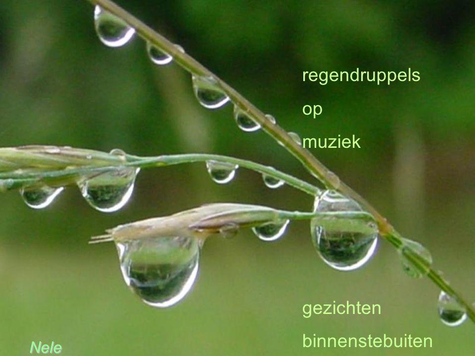 regendruppels op muziek gezichten binnenstebuiten Nele