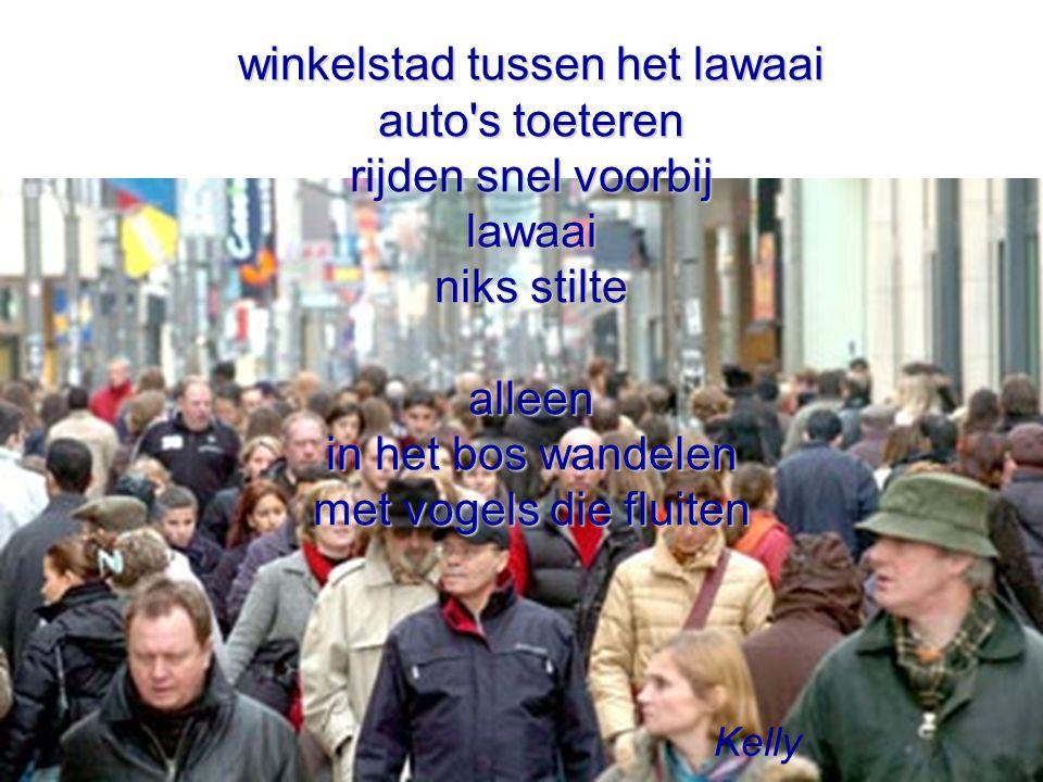 winkelstad tussen het lawaai