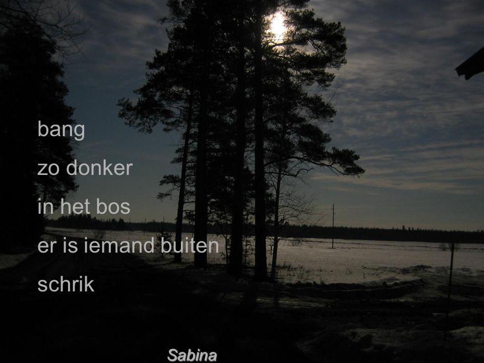 bang zo donker in het bos er is iemand buiten schrik Sabina
