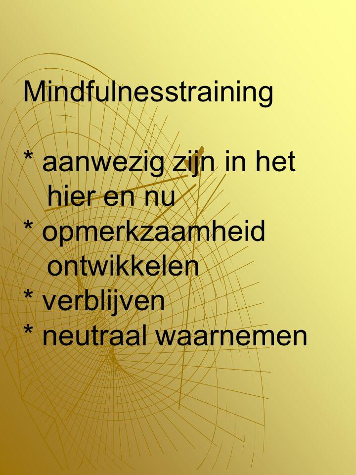 Mindfulnesstraining. aanwezig zijn in het hier en nu