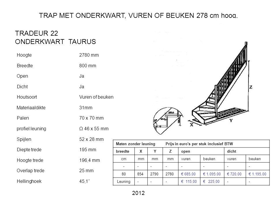 TRAP MET ONDERKWART, VUREN OF BEUKEN 278 cm hoog,