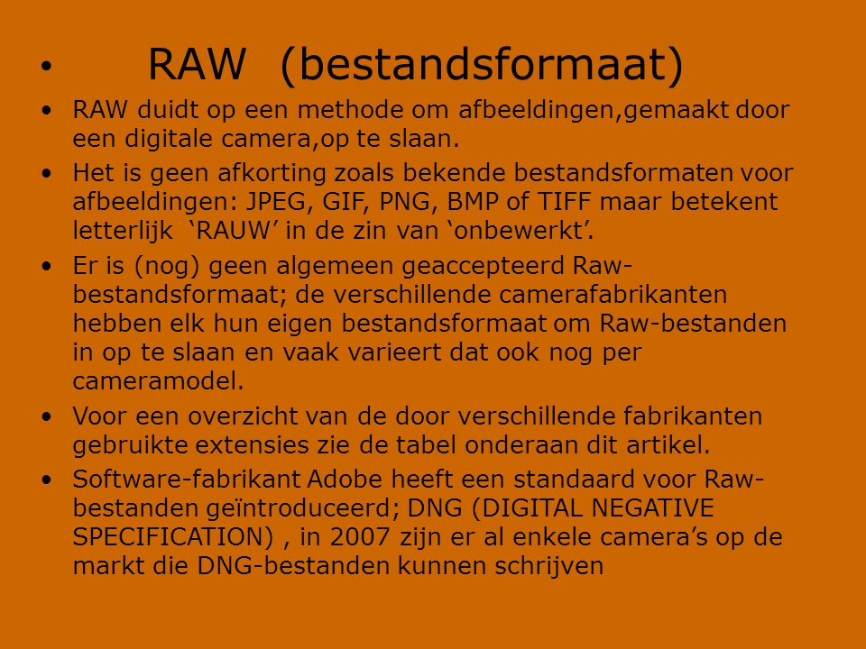 RAW (bestandsformaat)