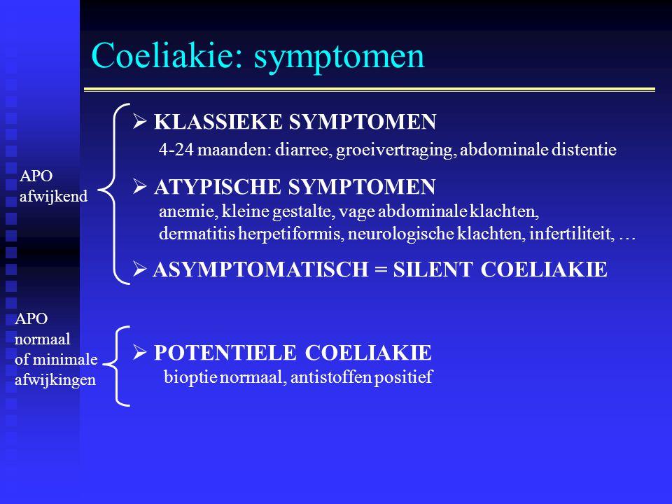glutenallergie diagnose