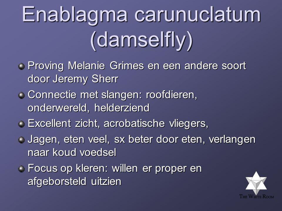 Enablagma carunuclatum (damselfly)