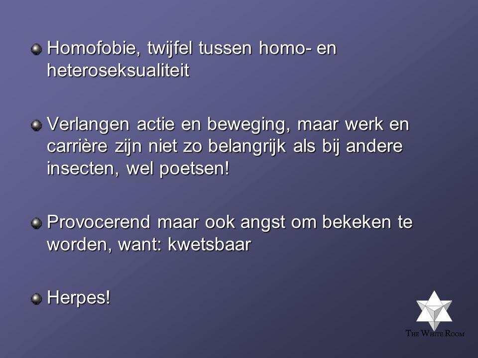 Homofobie, twijfel tussen homo- en heteroseksualiteit