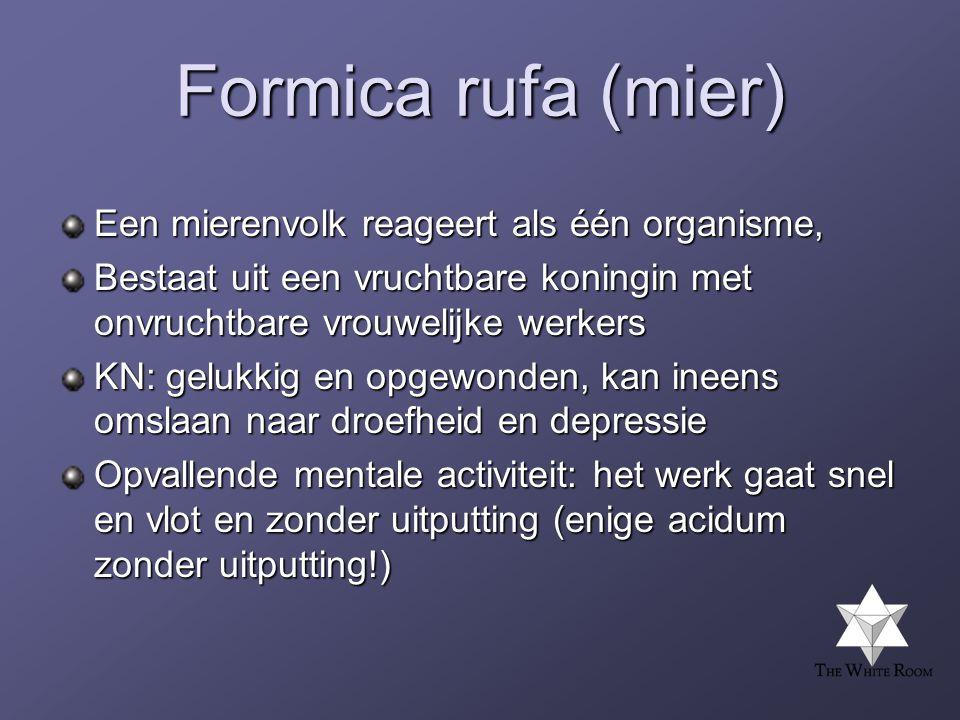 Formica rufa (mier) Een mierenvolk reageert als één organisme,