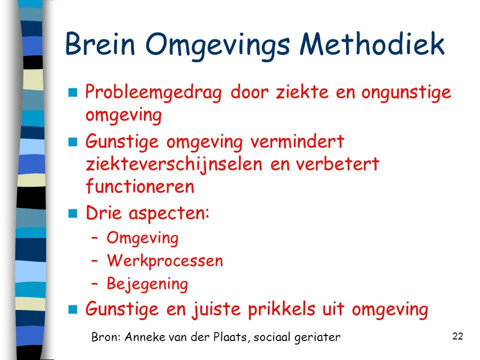 Brein Omgevings Methodiek