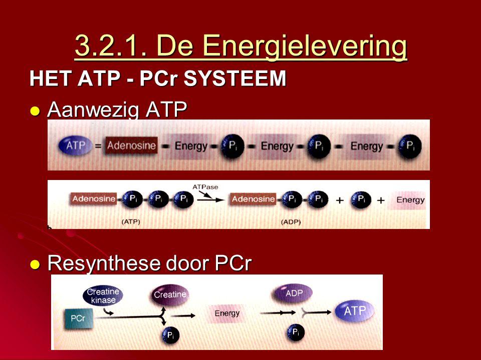 3.2.1. De Energielevering HET ATP - PCr SYSTEEM Aanwezig ATP