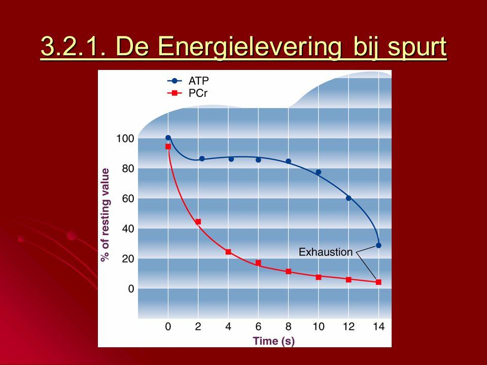 3.2.1. De Energielevering bij spurt