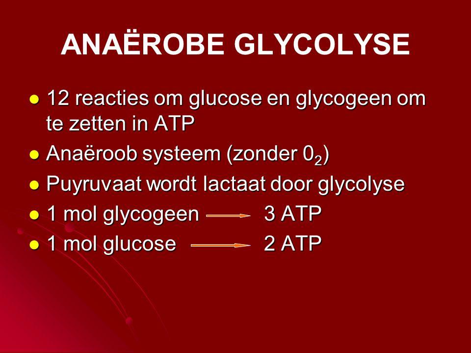 ANAËROBE GLYCOLYSE 12 reacties om glucose en glycogeen om te zetten in ATP. Anaëroob systeem (zonder 02)