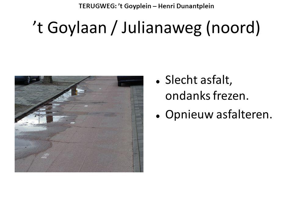't Goylaan / Julianaweg (noord)