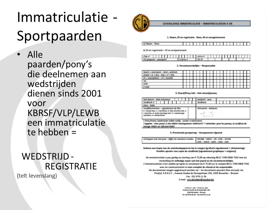 Immatriculatie - Sportpaarden