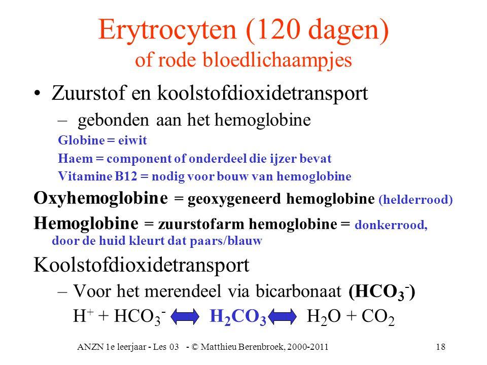 Erytrocyten (120 dagen) of rode bloedlichaampjes