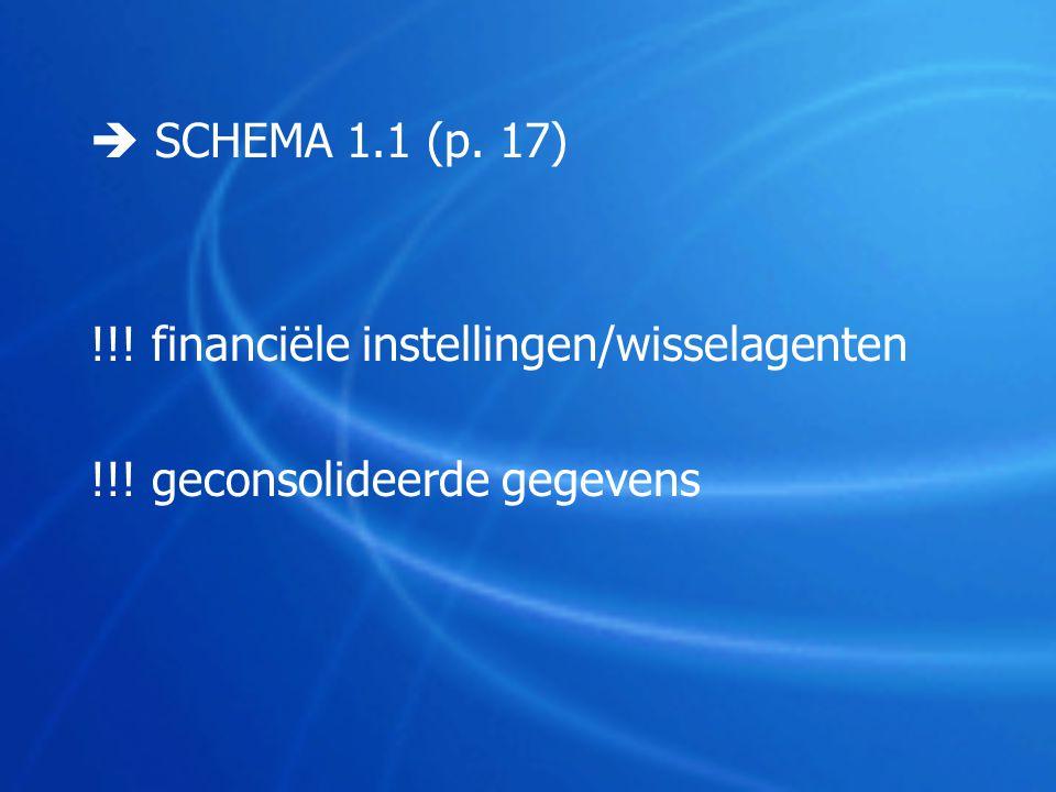  SCHEMA 1.1 (p. 17) !!! financiële instellingen/wisselagenten !!! geconsolideerde gegevens