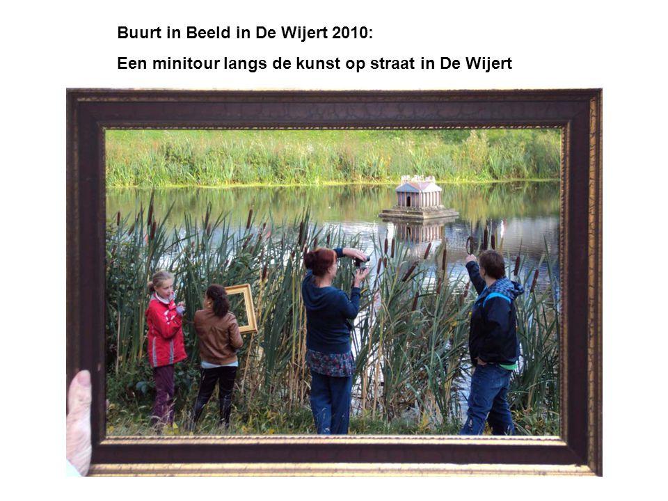 Buurt in Beeld in De Wijert 2010: