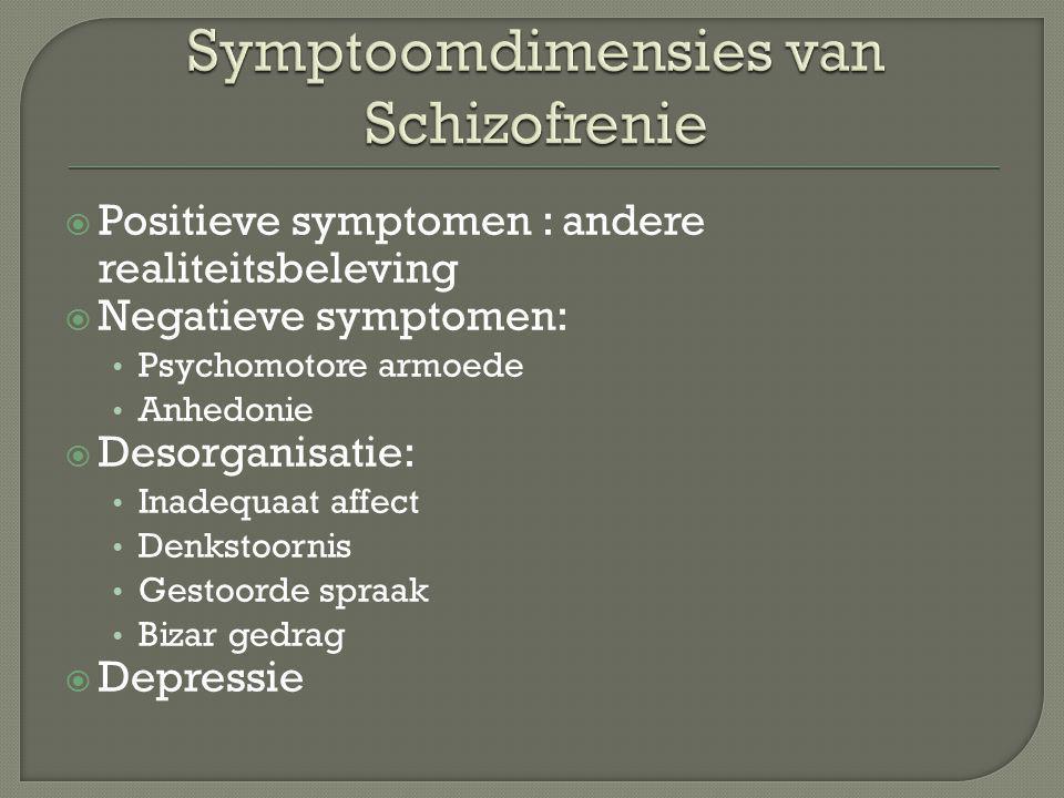 Symptoomdimensies van Schizofrenie
