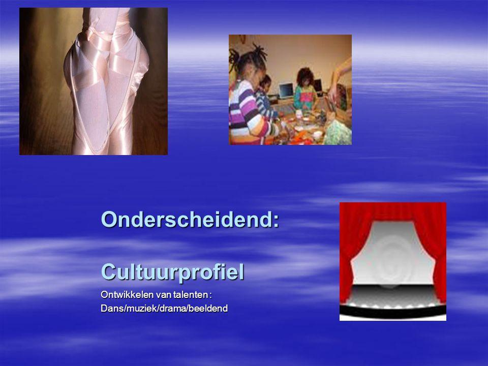 Onderscheidend: Cultuurprofiel