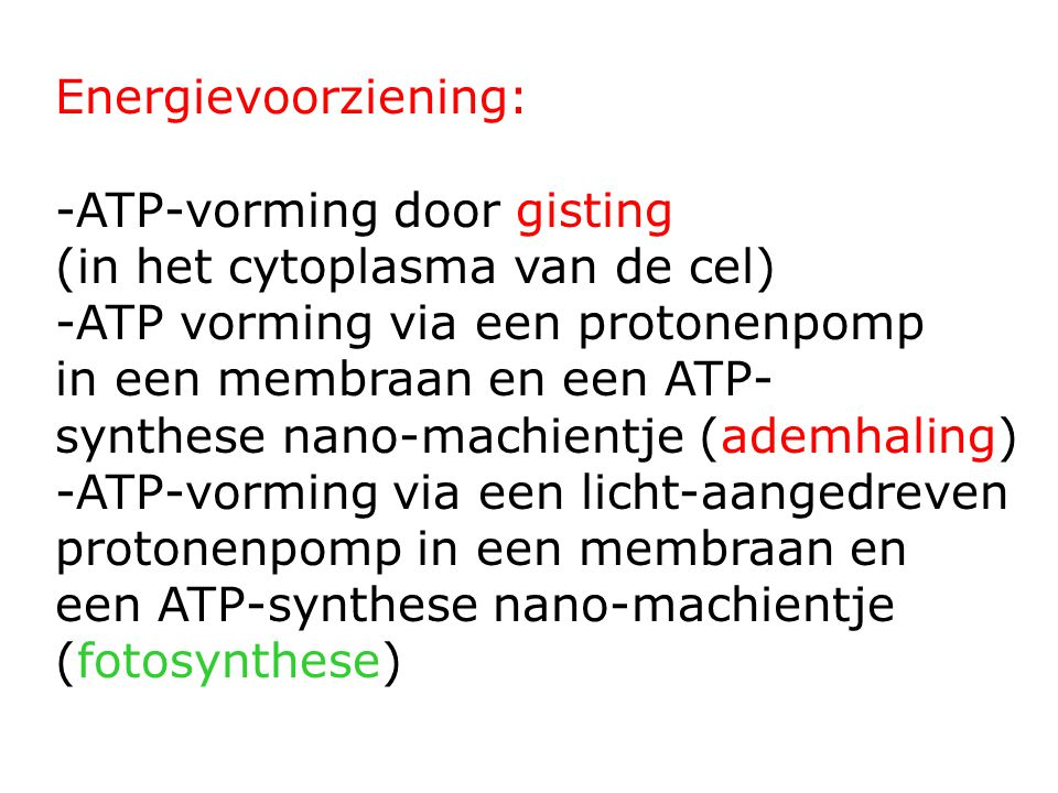 Energievoorziening: ATP-vorming door gisting. (in het cytoplasma van de cel) ATP vorming via een protonenpomp.