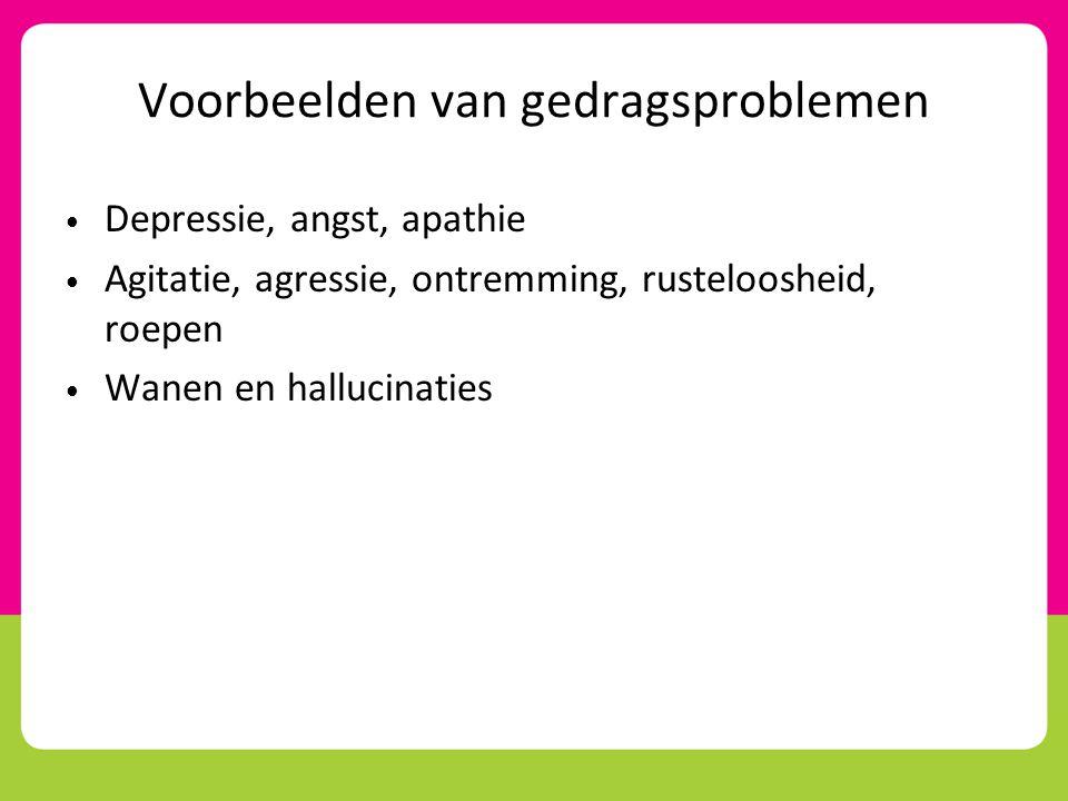 Voorbeelden van gedragsproblemen