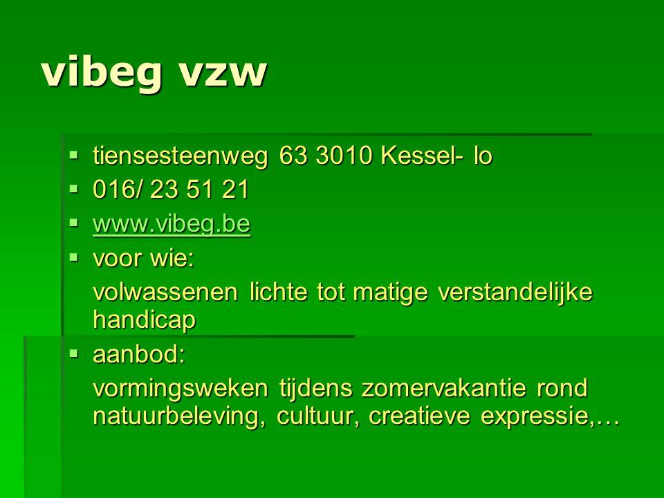 vibeg vzw tiensesteenweg 63 3010 Kessel- lo 016/ 23 51 21 www.vibeg.be