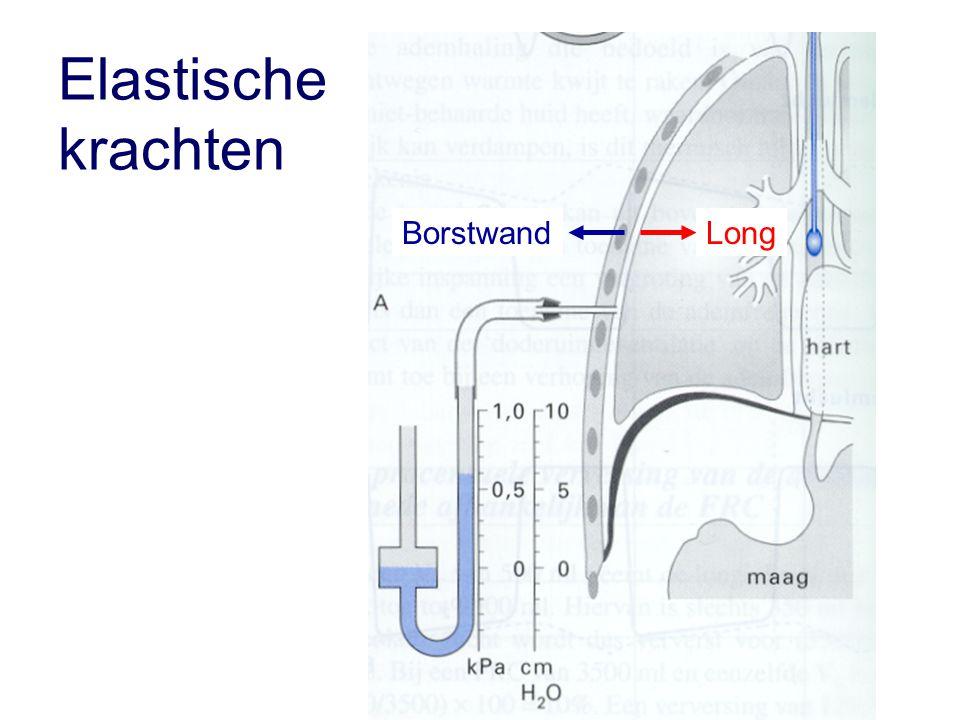 Elastische krachten Borstwand Long