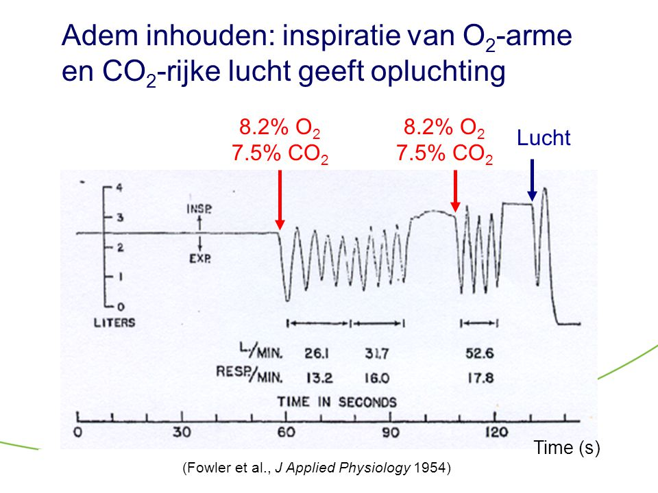 Adem inhouden: inspiratie van O2-arme en CO2-rijke lucht geeft opluchting