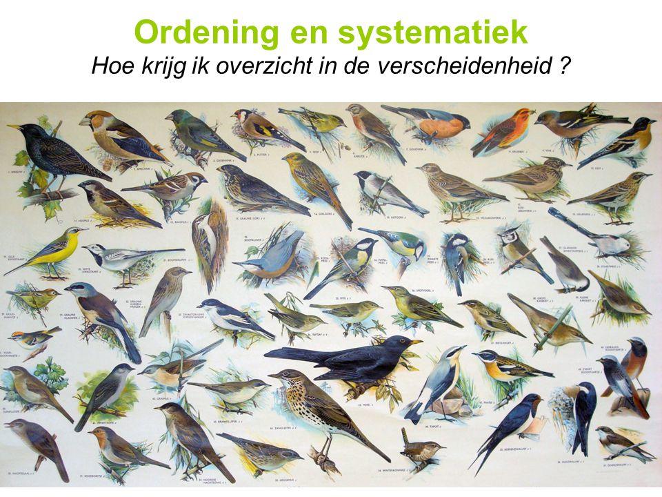 Ordening en systematiek Hoe krijg ik overzicht in de verscheidenheid