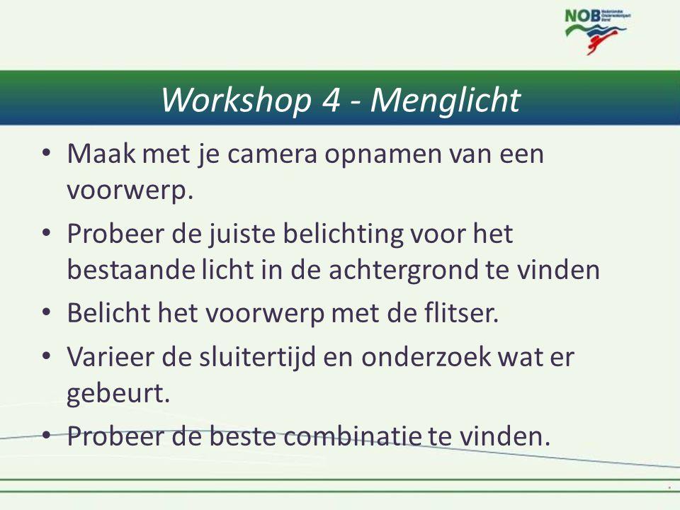 Workshop 4 - Menglicht Maak met je camera opnamen van een voorwerp.