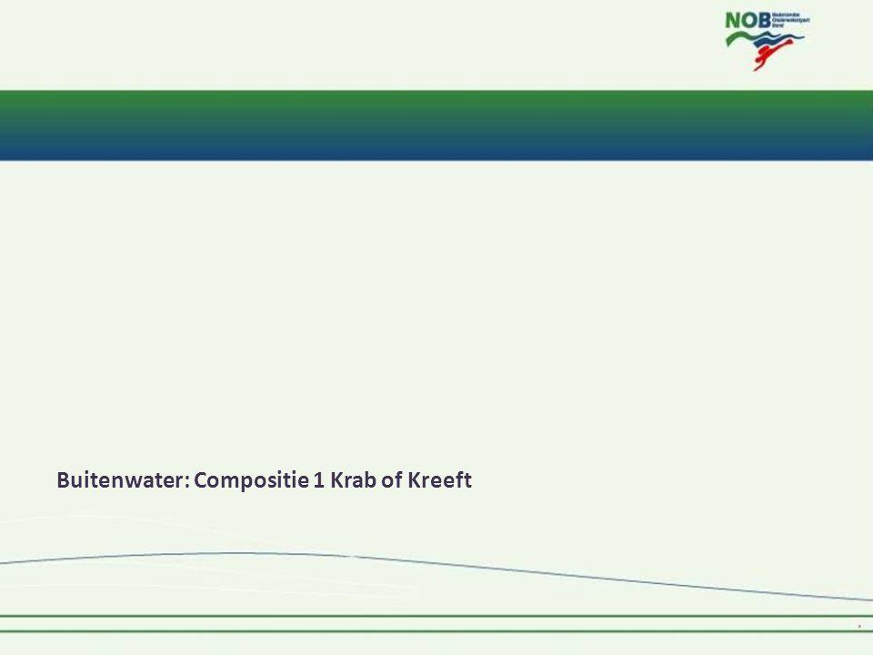 Buitenwater: Compositie 1 Krab of Kreeft