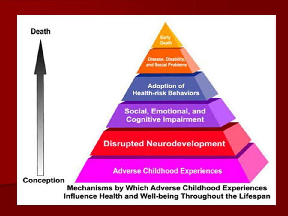 Dit laat zien hoe slechte ervaringen in de jeugd van invloed zijn op de rest van je leven.