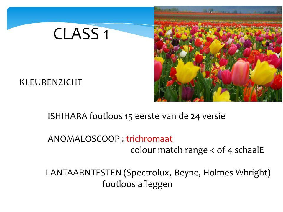 CLASS 1 KLEURENZICHT ISHIHARA foutloos 15 eerste van de 24 versie