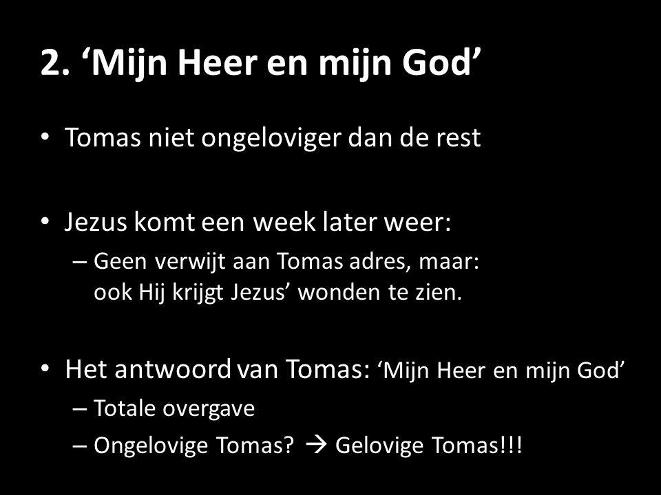 2. 'Mijn Heer en mijn God' Tomas niet ongeloviger dan de rest