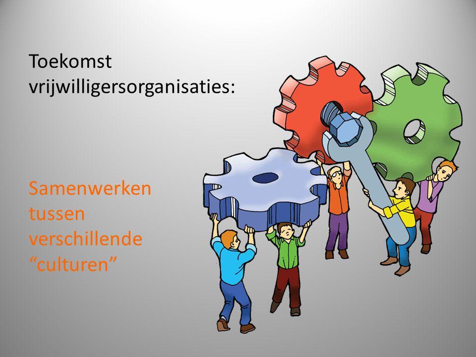 Toekomst vrijwilligersorganisaties: Samenwerken tussen verschillende culturen