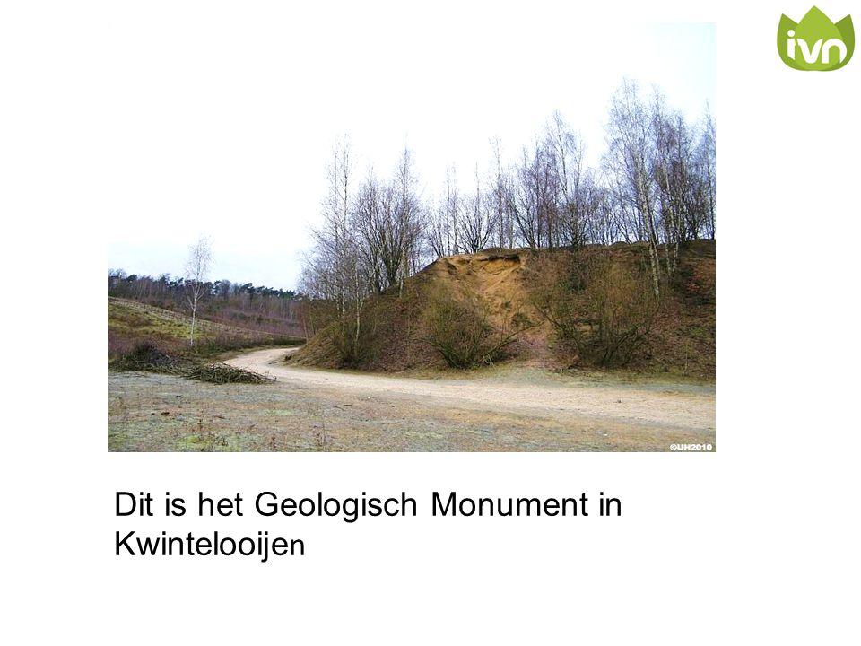 Dit is het Geologisch Monument in Kwintelooijen