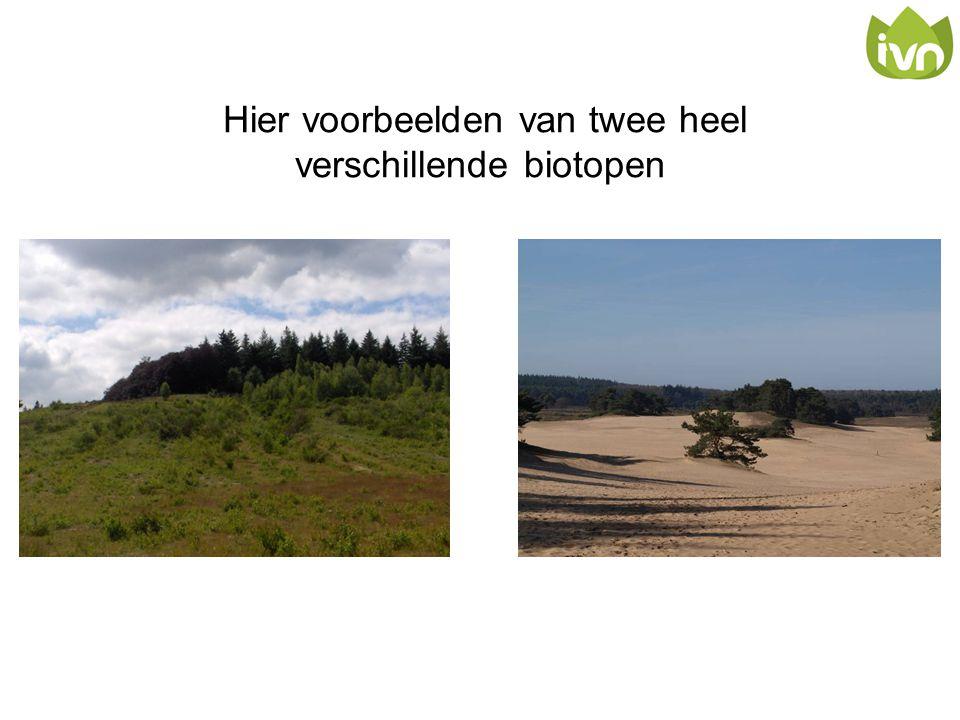 Hier voorbeelden van twee heel verschillende biotopen