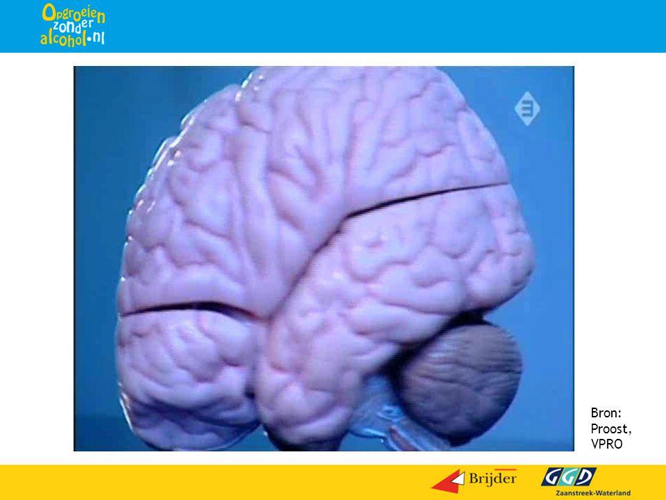 Bron: Proost, VPRO Dia 2 Hierbij kunt u een filmfragment laten zien.