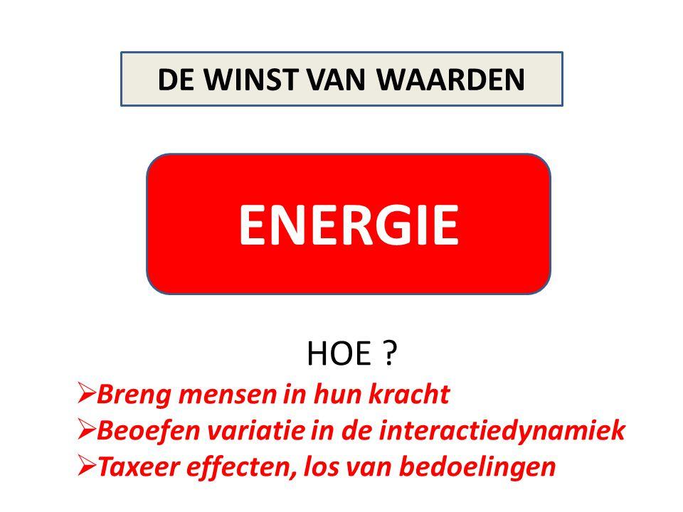 ENERGIE HOE DE WINST VAN WAARDEN Breng mensen in hun kracht