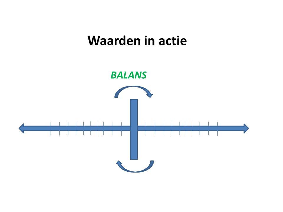 Waarden in actie BALANS Wat doen om risico's te begrenzen (zie HBR)