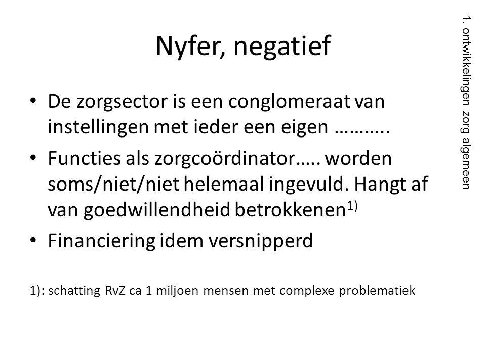 Nyfer, negatief De zorgsector is een conglomeraat van instellingen met ieder een eigen ………..