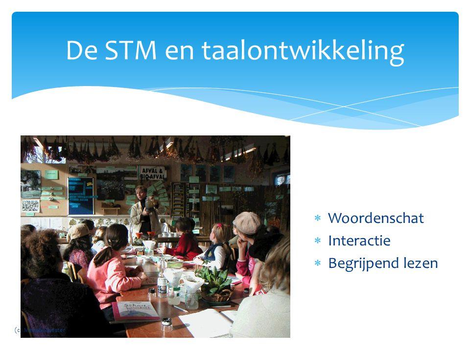 De STM en taalontwikkeling