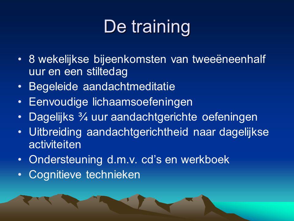 De training 8 wekelijkse bijeenkomsten van tweeëneenhalf uur en een stiltedag. Begeleide aandachtmeditatie.