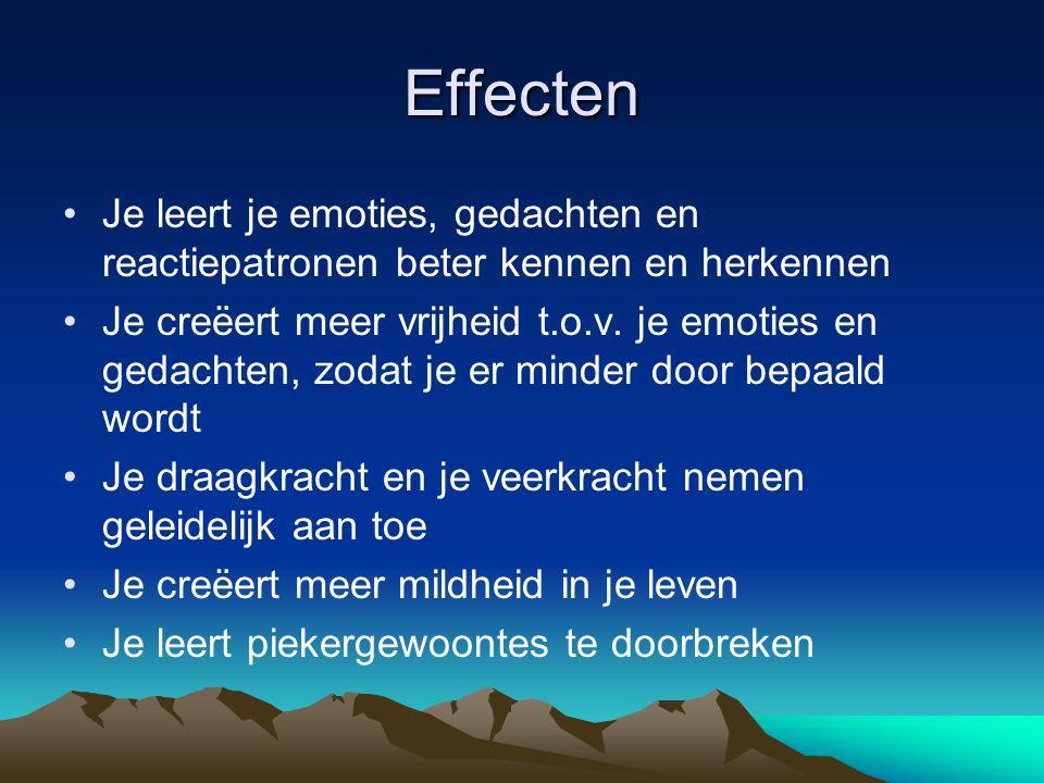 Effecten Je leert je emoties, gedachten en reactiepatronen beter kennen en herkennen.