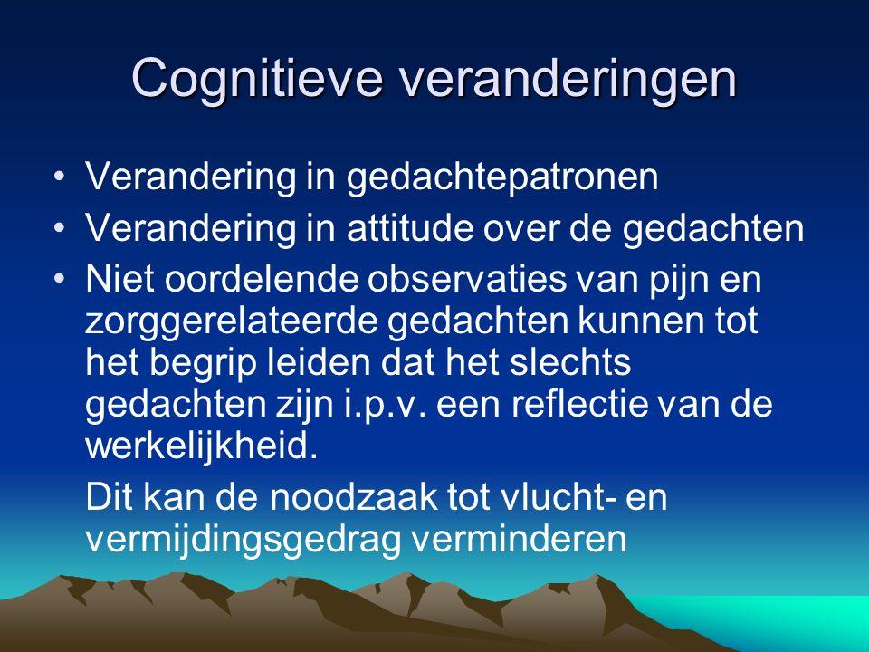 Cognitieve veranderingen