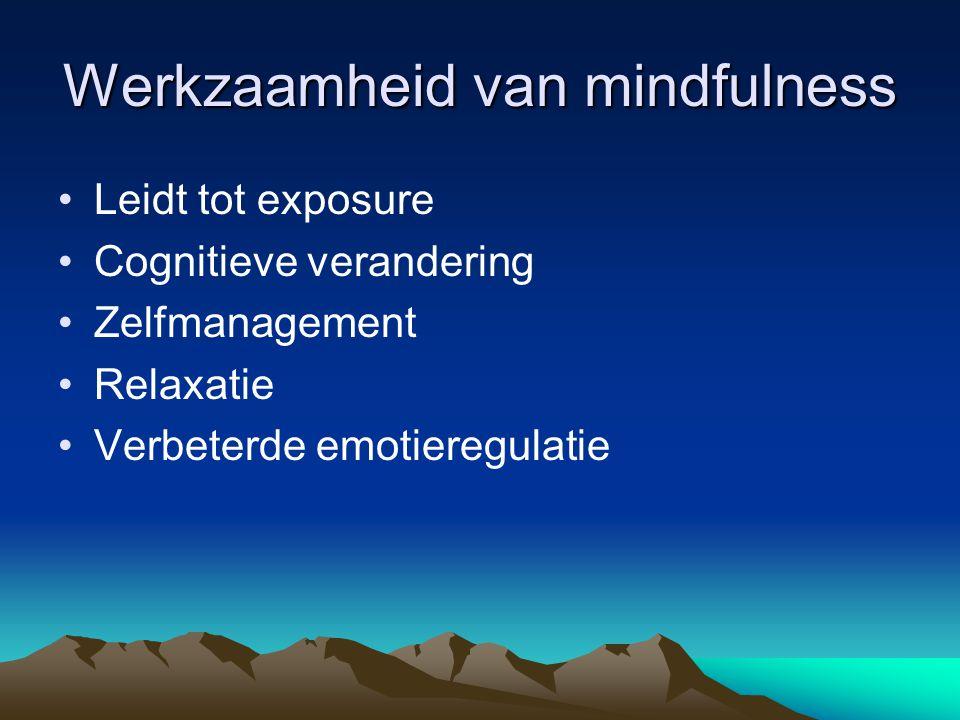Werkzaamheid van mindfulness